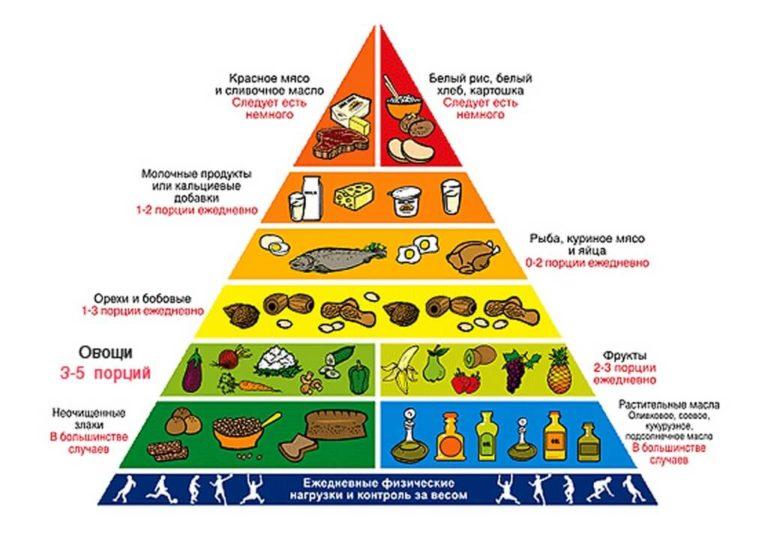 Всё о пирамиде здорового питания
