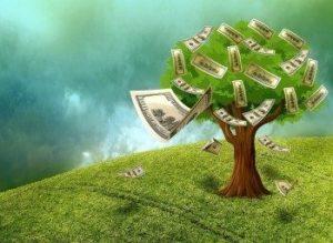 Техника выполнения медитации «Денежное дерево»