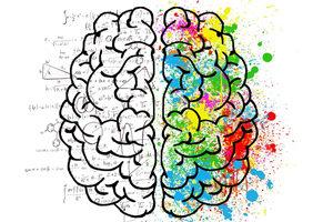 Особенности истории становления психологии