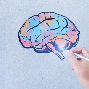 Значение и виды онтогенеза в психологии