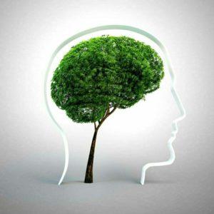 Виды и симптомы нарушения внимания в психологии